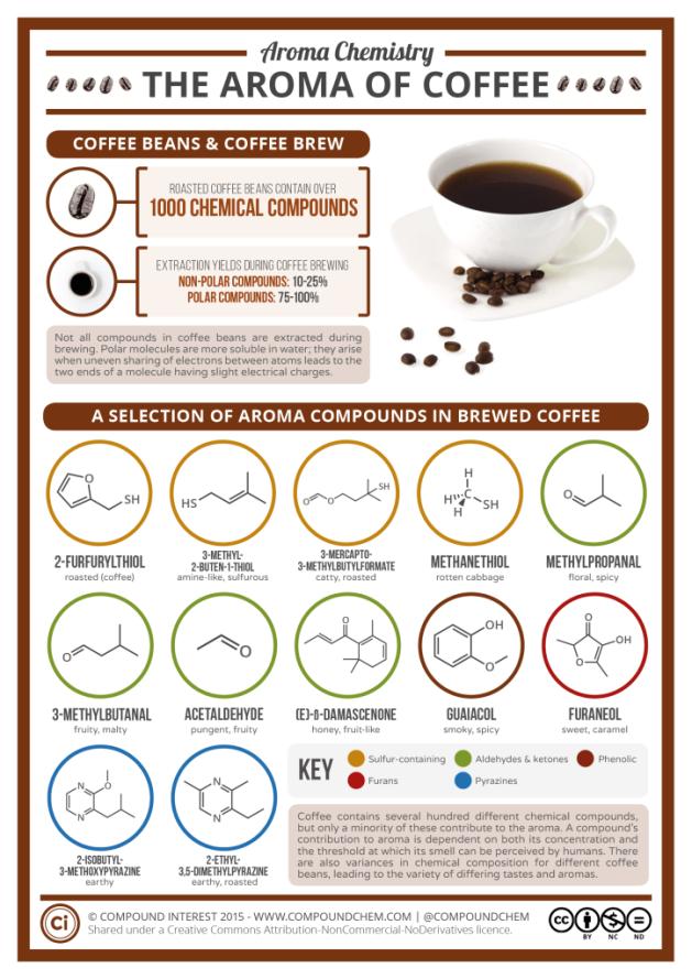 Aroma-Chemistry-Coffee-724x1024