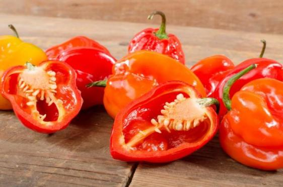 Compound-that-makes-peppers-hot-could-help-kill-cancer-cells