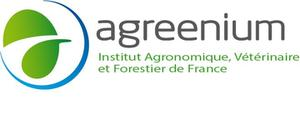 Logo_IAVFF_large