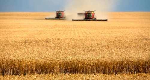 1167982_agriculture-la-france-a-dix-ans-pour-renouer-avec-la-competitivite-web-tete-021421619239