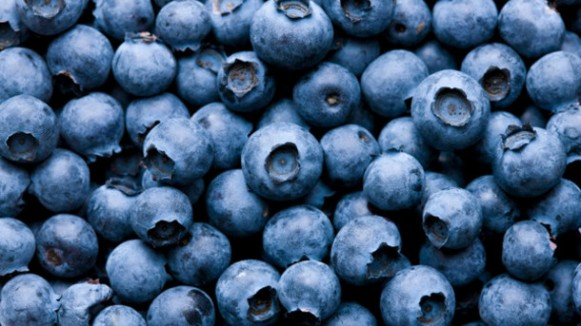 Berries-may-enhance-motor-performance-and-improve-cognition-says-study_strict_xxl