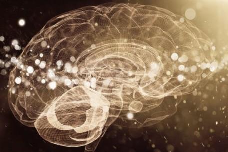brrain-mind-intelligence-particles-dust-1021x580-537x360