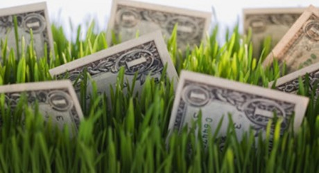green-investment-dollars-grass-460x250