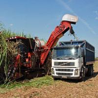 harvesting-S-America--ethanol2