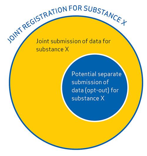 joint_registration