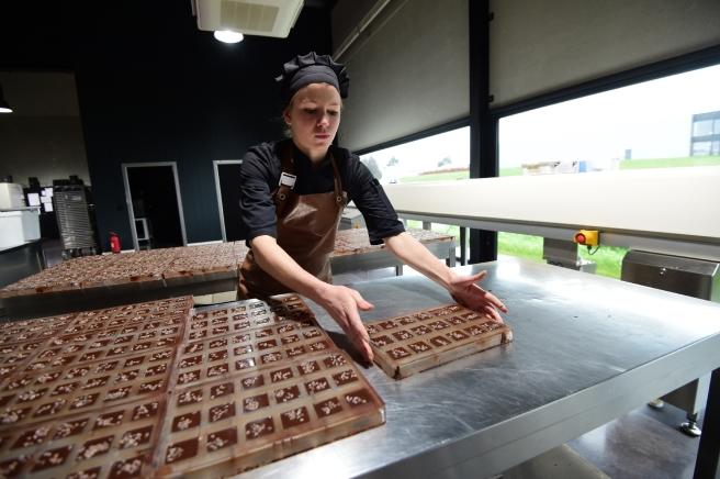 cacao-fevier