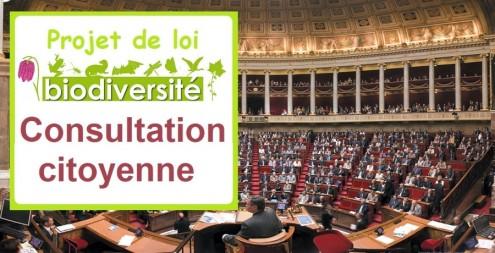 consultation-citoyenne-projet-de-loi-biodiversite-.jpg_img