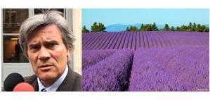 Filiere-des-plantes-a-parfum-et-reglement-REACH_actualite_full